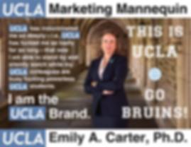 Emily A. Carter, UCLA Executive Vice Chancellor