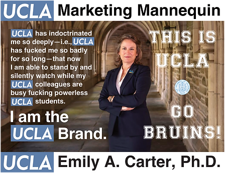 Emily A. Carter, UCLA Executive Vice Chancellor