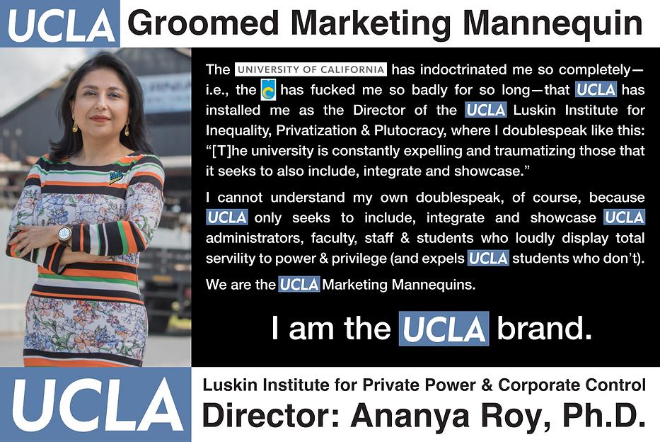 Ananya Roy; UCLA Luskin Institute.png