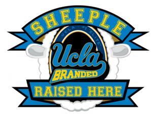 UCLA logo: UCLA Branded Sheeple Raised Here