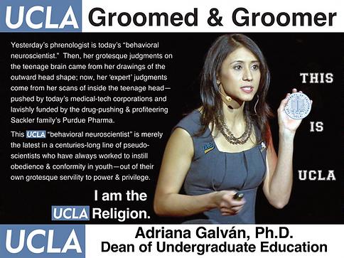 Adriana Galván; UCLA Dean of Undergraduate Education