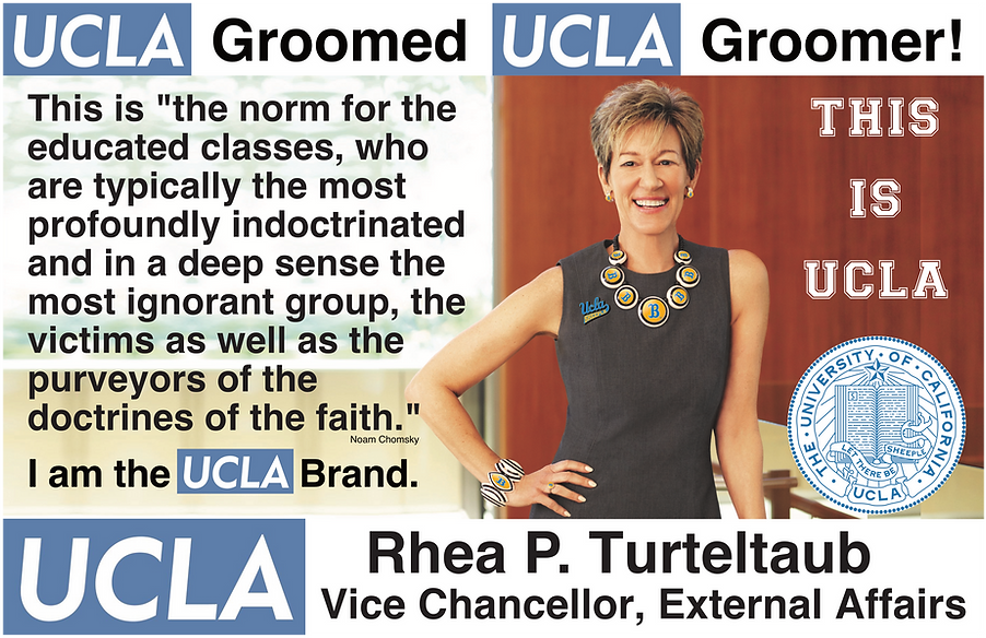 Rhea P. Turteltaub UCLA External Affairs