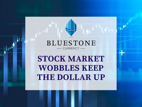 Stock Market Wobbles Keep The Dollar Up
