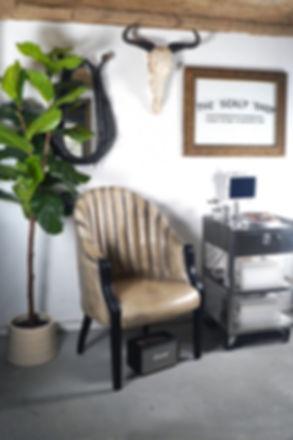 The Scalp Shop Interior Scalp Micro Pigm