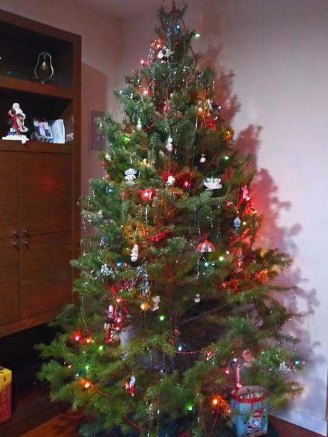 Ehlen Tree