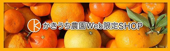 Web限定SHOP