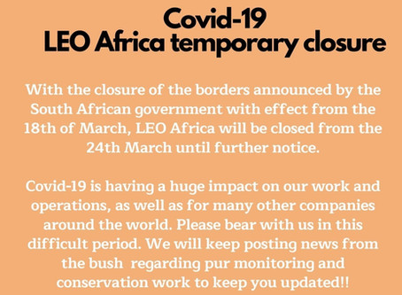 LEO Africa Temporary Closure - Covid-19