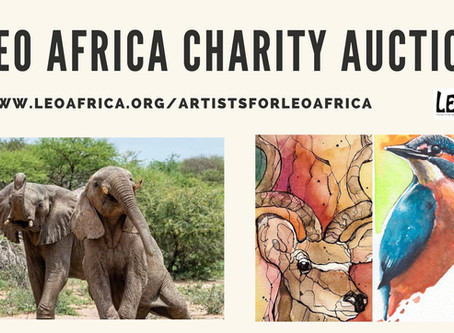 LEO Africa Charity Auction