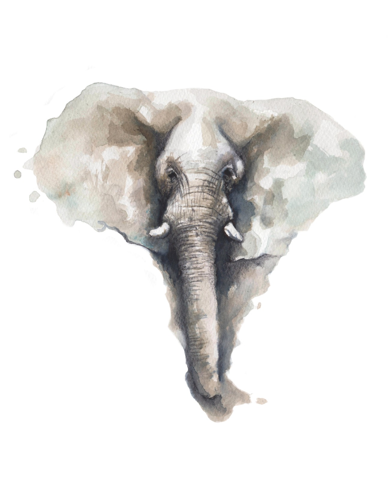 Elephant Painting Alessandro Infuso