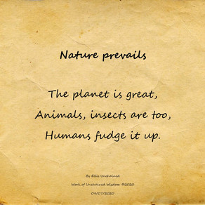 Nature Prevails - Haiku