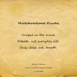 Multidirectional Divides (Haiku)