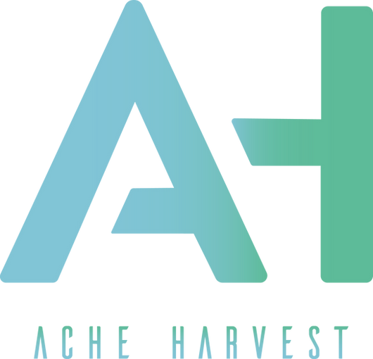 The official logo for the South Riding based Rock Band, Ache Harvest. Designed by Zachary Morrison.