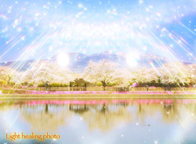 希望の春(Spring of hope)