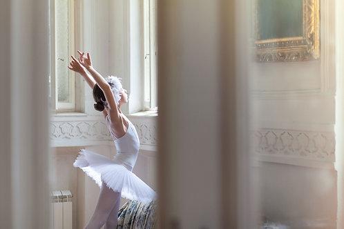 Young Ballerina Starter Pack