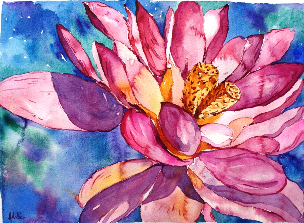 Lotus Glory