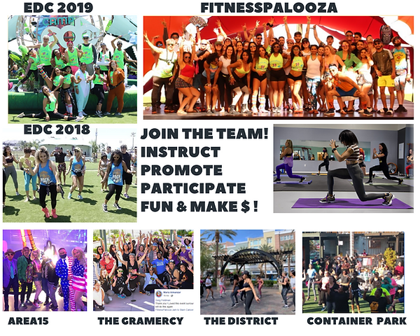 FitnessPalooza - Team1.png
