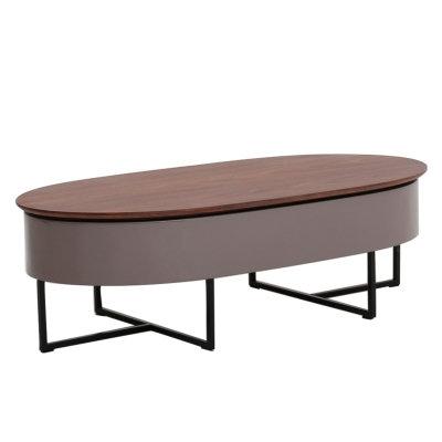 Denzel Storage Coffee Table