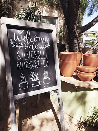 outdoor chalkboard sign that says welcome to silverbell nursery & co