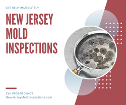 New Jersey Mold Inspections