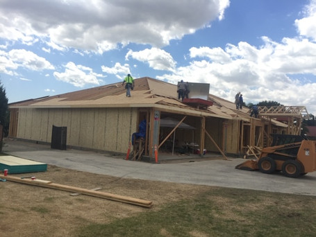 Roof Sheeting