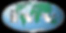 IVV Global Logo (2).png