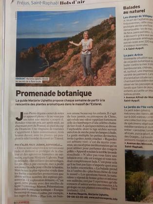 Article lExpress.jpg