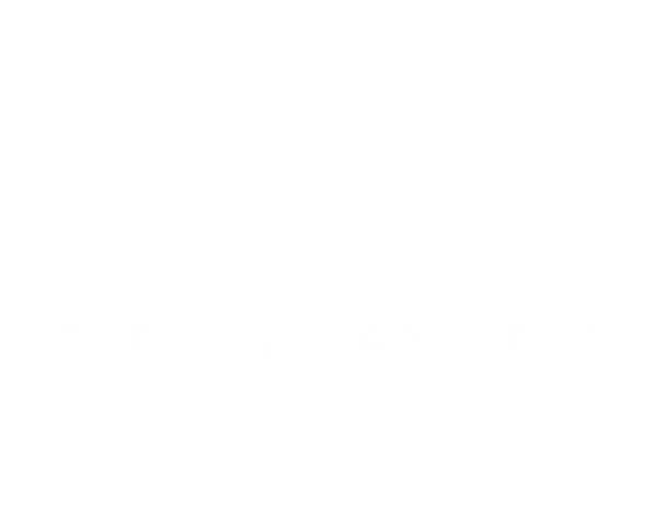 the_liink_project_logo_liink_logo_white.