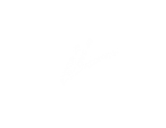 the_liink_project_logo_liink_icon_white.