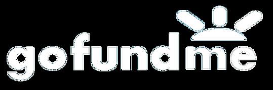 gofundme logo 2.png