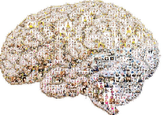 Brain of Brains.jpg