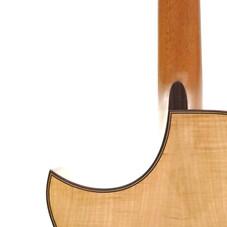 gc_maple_cutaway_back_detail.jpg