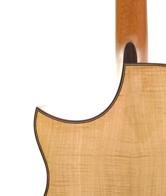 gc_maple_cutaway_back_detail.jpg