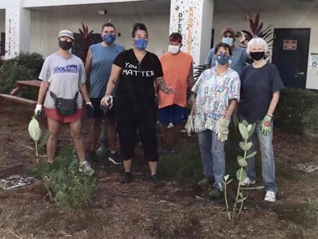 Wilton Manors Elementary School Butterfly Garden Adopted by Local Garden Club