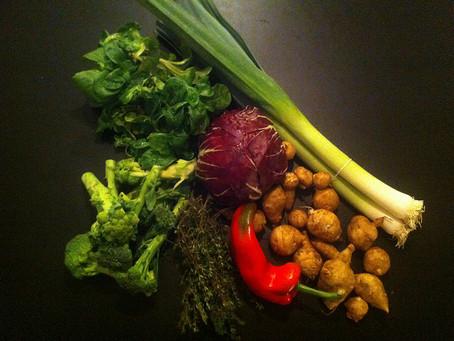 המאכלים שיישפרו את פלורת המעיים שלכם