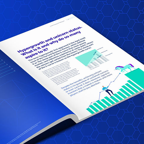 Fintech Hypergrowth White Paper from Bedford Consulting.jpg