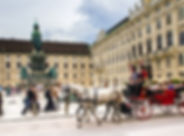 vienna-1544015_1280.jpg