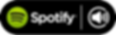 stream AShamaluevMusic on Spotify