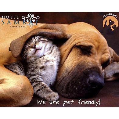 Pet Friendly 1.jpg