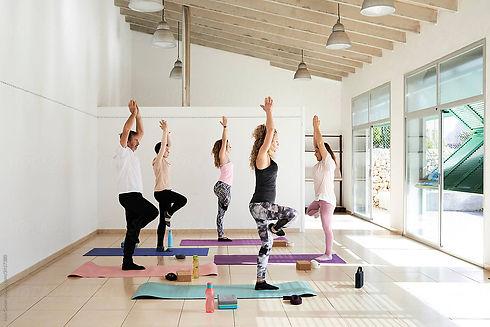 yoga business.jpg