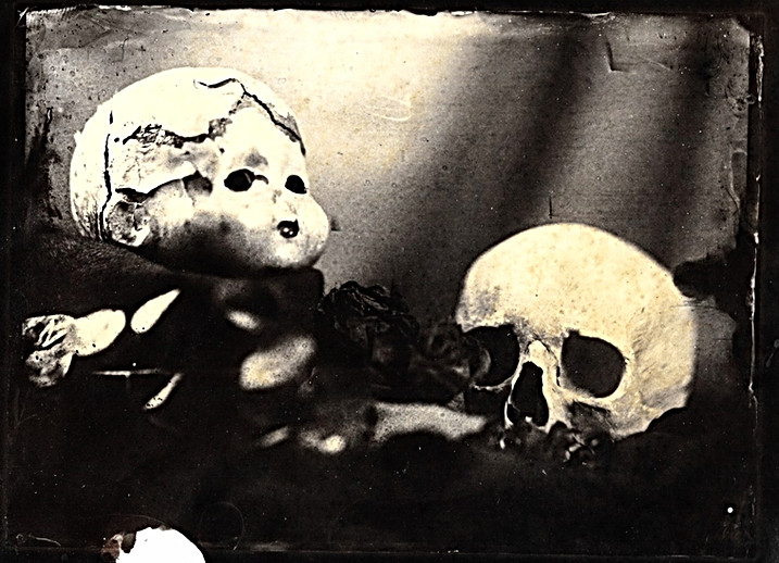 Albumen print from a collodion negative
