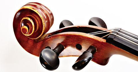 violon Pegs