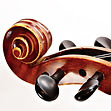 Accessori per violino Dunlop - Strumenti musicali Roma