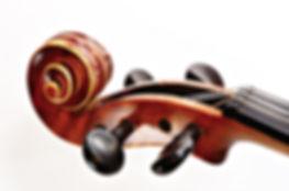 a violin head stock