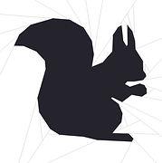 Squirrel FB Photo.jpg