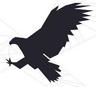 Hawk FB Photo.jpg