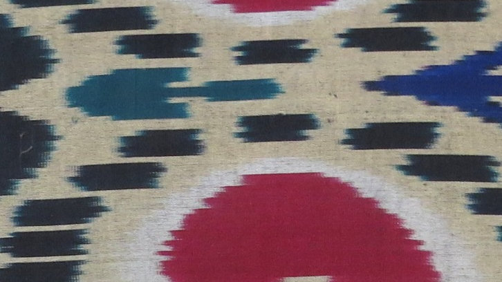 Silk ikat cushion cover with moire roundel design