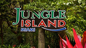 Jungle-Island-Miami.jpg