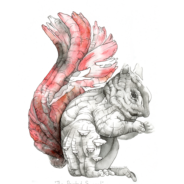The Painted Squirrel