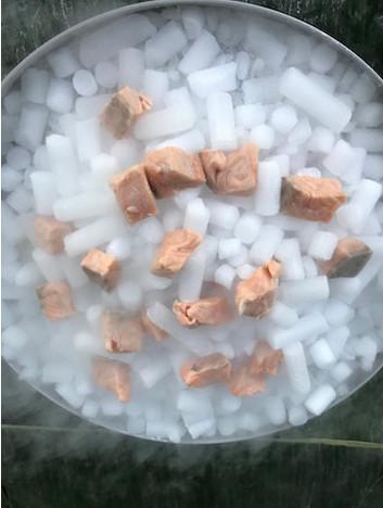 salmon ceviche on dry ice