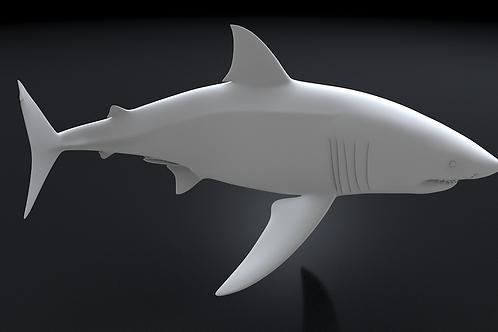 Great White Shark 3D Printable Model